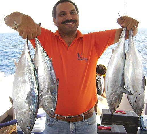 Khalid Gomaa with Red Sea Bonito, shallow boat trolling in the Gulf of Suez